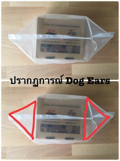 Dog Ears-ถุงหูหมา